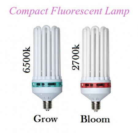 Compact Fluorescent Lamp CFL Bloom Light 250w Red