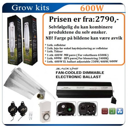 Light Kit 600W